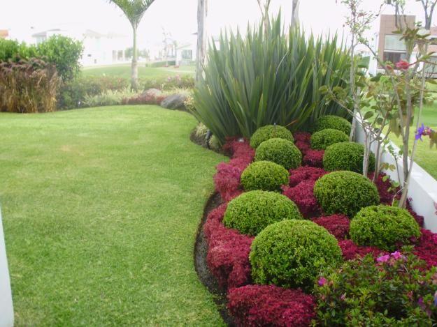 Paisajismo en panam grama fina panam for Jardines bonitos y sencillos