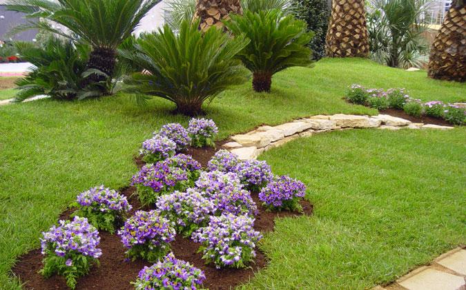 Paisajismo panam grama fina panam - Disenos de jardineria ...