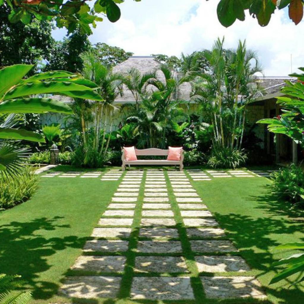 Diseño de Jardines en Panamá - Grama Fina Panamá
