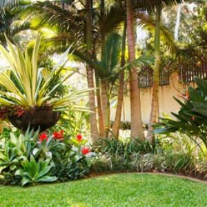 10 consejos para dise o de jardines panama grama fina panam Jardines exteriores pequenos para casas