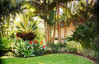 10 consejos para dise o de jardines panama grama fina panam - Disenador de jardines ...