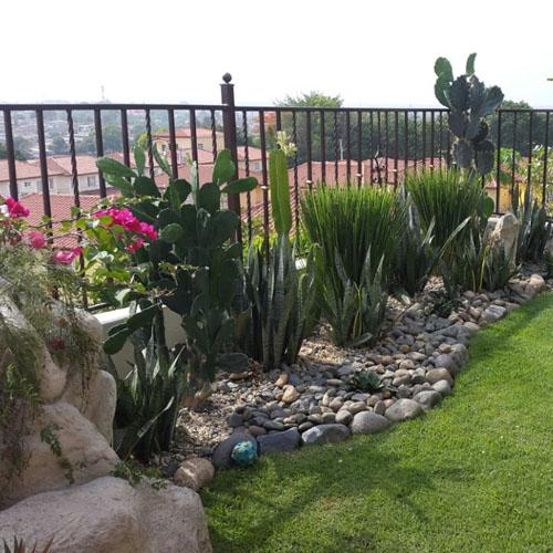 Dise os de jardines panama grama fina panam - Disenador de jardines ...