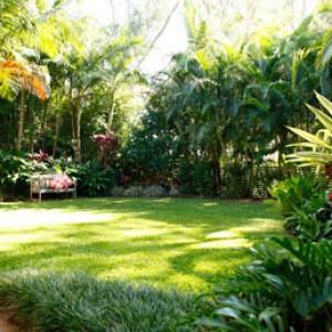 Jardineria en Panama