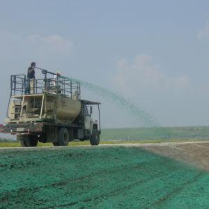 Especialistas en servicios de hidrosiembra en Panamá
