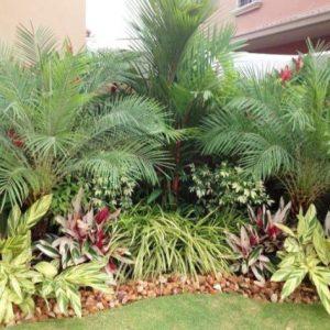 empresa de paisajismo en Panamá