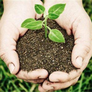agricultura sostenible en Panamá