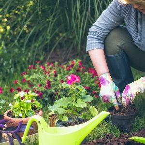 beneficios para la salud de la jardinería